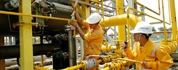 Maintenance and repair services for gas facility equipments