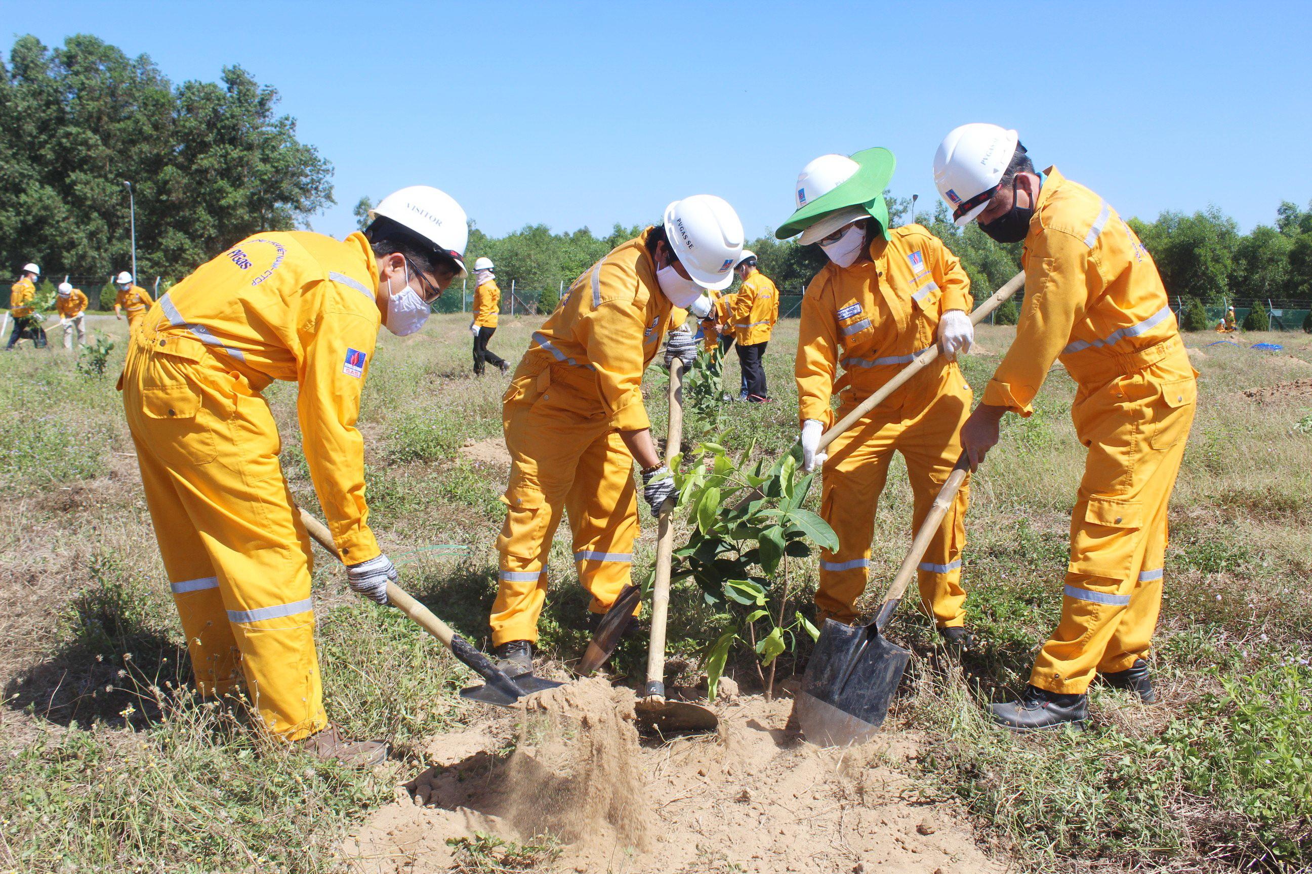 Tích cực trồng cây phủ xanh công trình khí